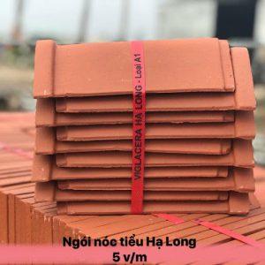 Ngói lợp đất nung Viglacera Hạ Long Giếng Đáy 08
