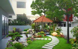 Gợi ý 8 loại cây cho sân vườn nhỏ trở nên đẹp hơn